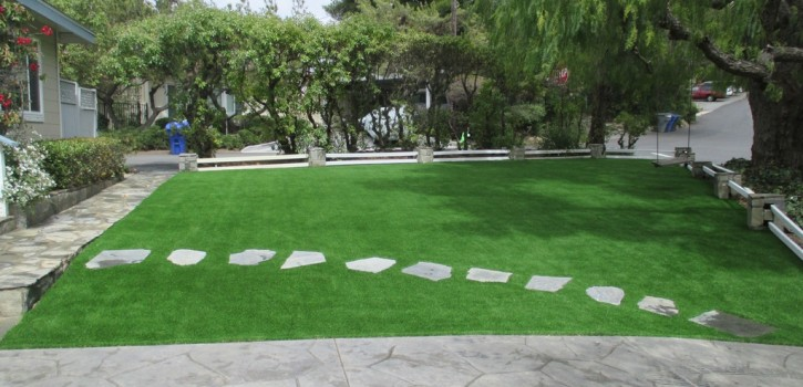 Artificial Turf Ideas for Santee Homes