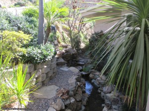 California Landscaping Ideas