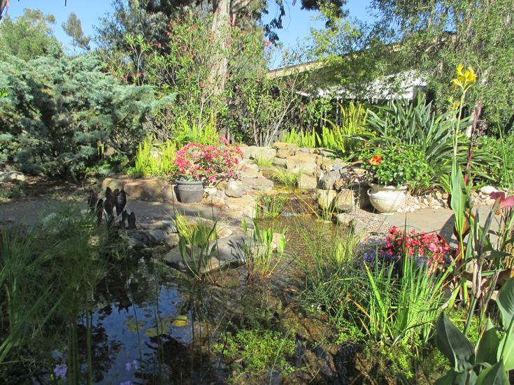 Breeden Pond Project Pacific Dreamscapes