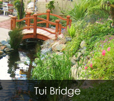 Tui Bridge Project