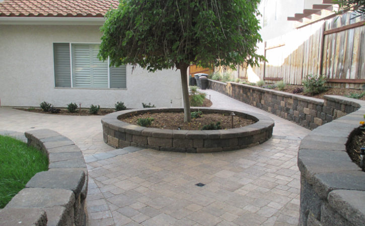 No Water Landscaping Ideas Escondido