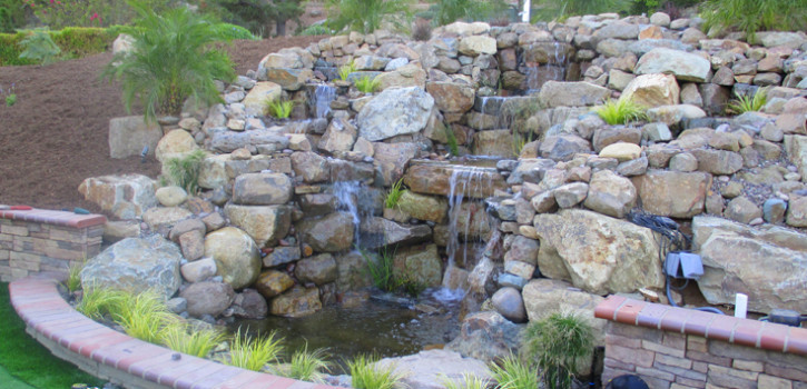 La Mesa Pond Landscaping Ideas