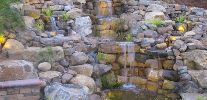 Point Loma Pond Landscaping Ideas