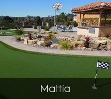 Mattia Artificial Turf San Diego | Landscape Design | Pacific Dreamscapes