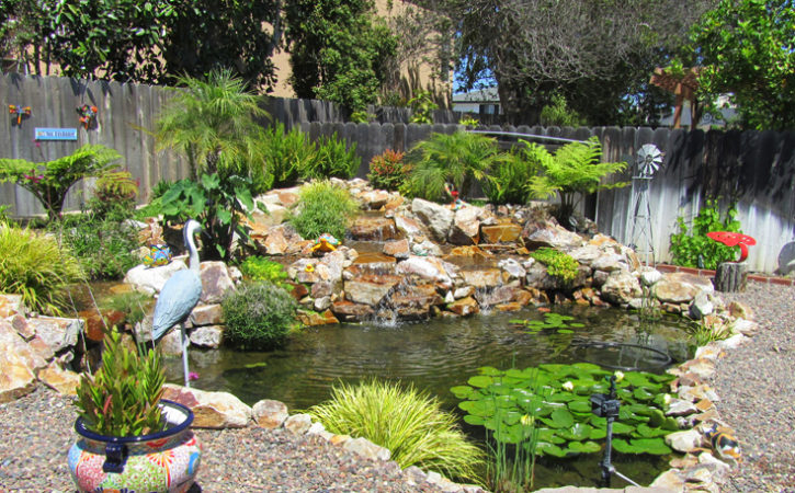 Water Garden Landscaping Ideas Point Loma