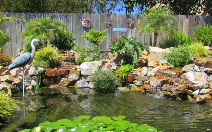 Water Garden Landscaping Ideas La Jolla