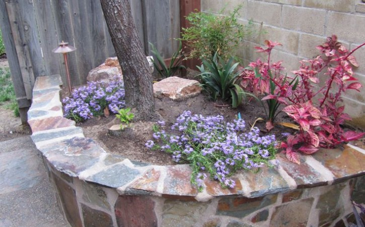Poway Backyard Landscape Design