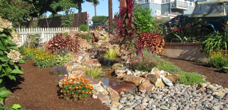 la mesa pondless waterfall design