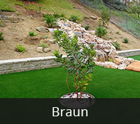 Braun Artificial Turf San Diego | Landscape Design | Pacific Dreamscapes