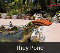 Thuy Pond Project