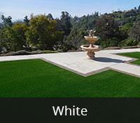 Marilyn White Artificial Turf San Diego | Landscape Design | Pacific Dreamscapes