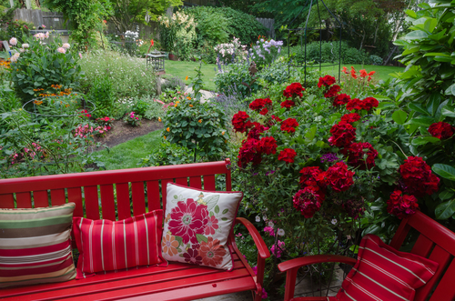 how to start landscaping your yard