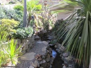 California Landscaping Ideas