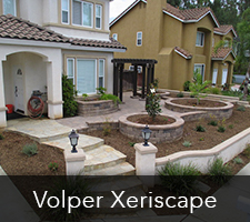 Aaron Volper Xeriscapes Project