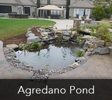 Agredano Pond Project
