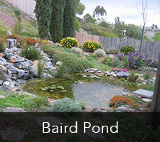 Baird Pond Project