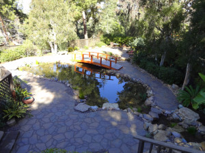 San Diego Professional Landscaper