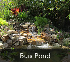 Buis Pond Project