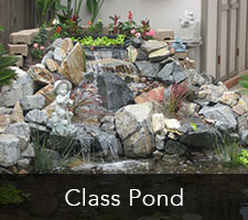 Class Pond Project