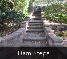 San Diego Steps - Dam Steps Project
