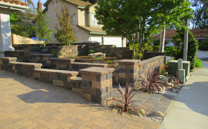 No Water Landscaping Ideas Clairemont
