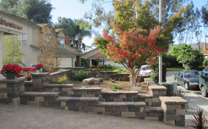 No Water Landscaping Ideas La Mesa