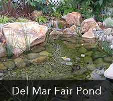 Del Mar Fair Pond Project