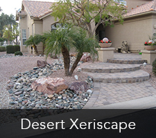 Desert Xeriscapes Project