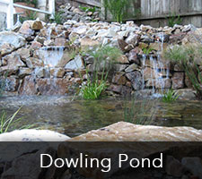 Dowling Pond Project