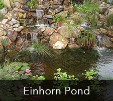 Einhorn Pond Project