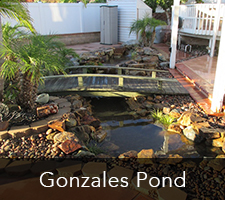 Gonzales Pond Project