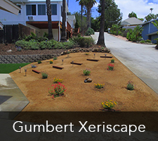 Gumbert Xeriscapes Project