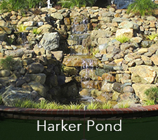 Harker Pond Project