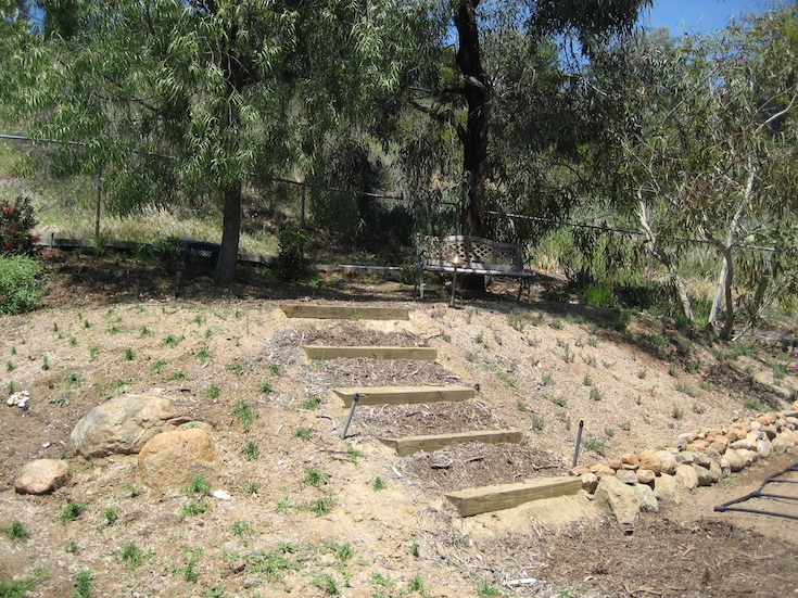 HARDSCAPES STEPS DANIELS 0
