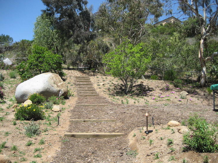 HARDSCAPES STEPS DANIELS 4