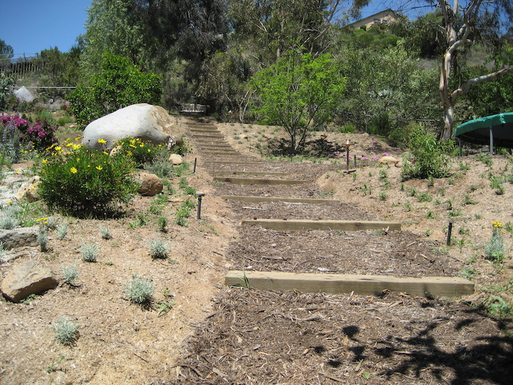 HARDSCAPES STEPS DANIELS 5