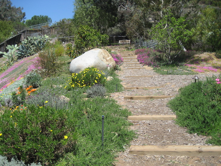 HARDSCAPES STEPS DANIELS 6