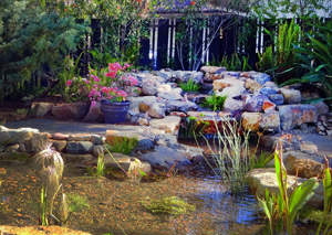 Landscaping in San Diego, CA