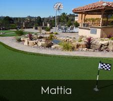 Mattia Artificial Turf San Diego   Landscape Design   Pacific Dreamscapes