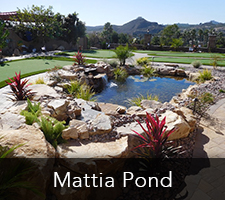 Mattia Pond Project