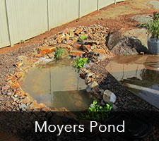 Moyers Pond Project