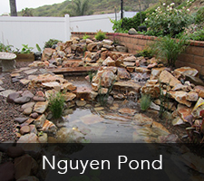 Knguyen Pond Project