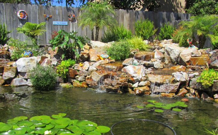 Water Garden Landscaping Ideas La Mesa