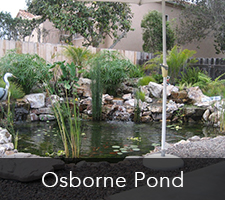 Osborne Pond Project