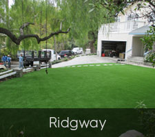 Ridgway Artificial Turf San Diego | Landscape Design | Pacific Dreamscapes