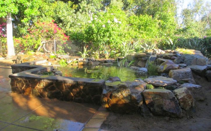 San Diego Pond Builders 1