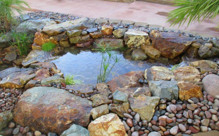 san diego pond builders 18