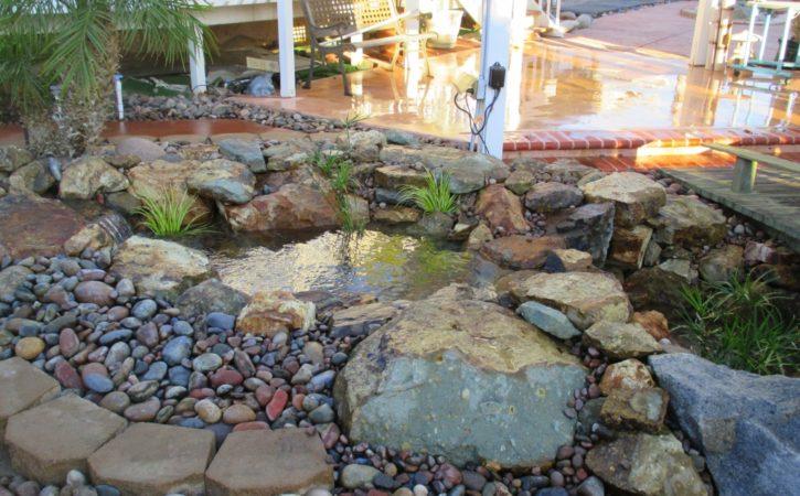 san diego pond builders 19
