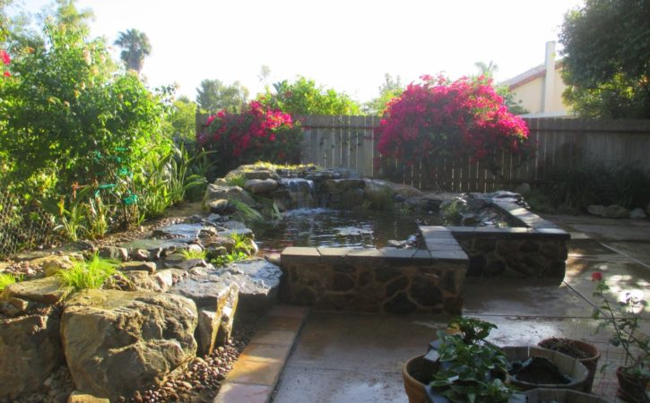 san diego pond builders 8