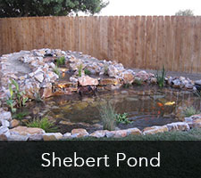 Shebert Pond Project